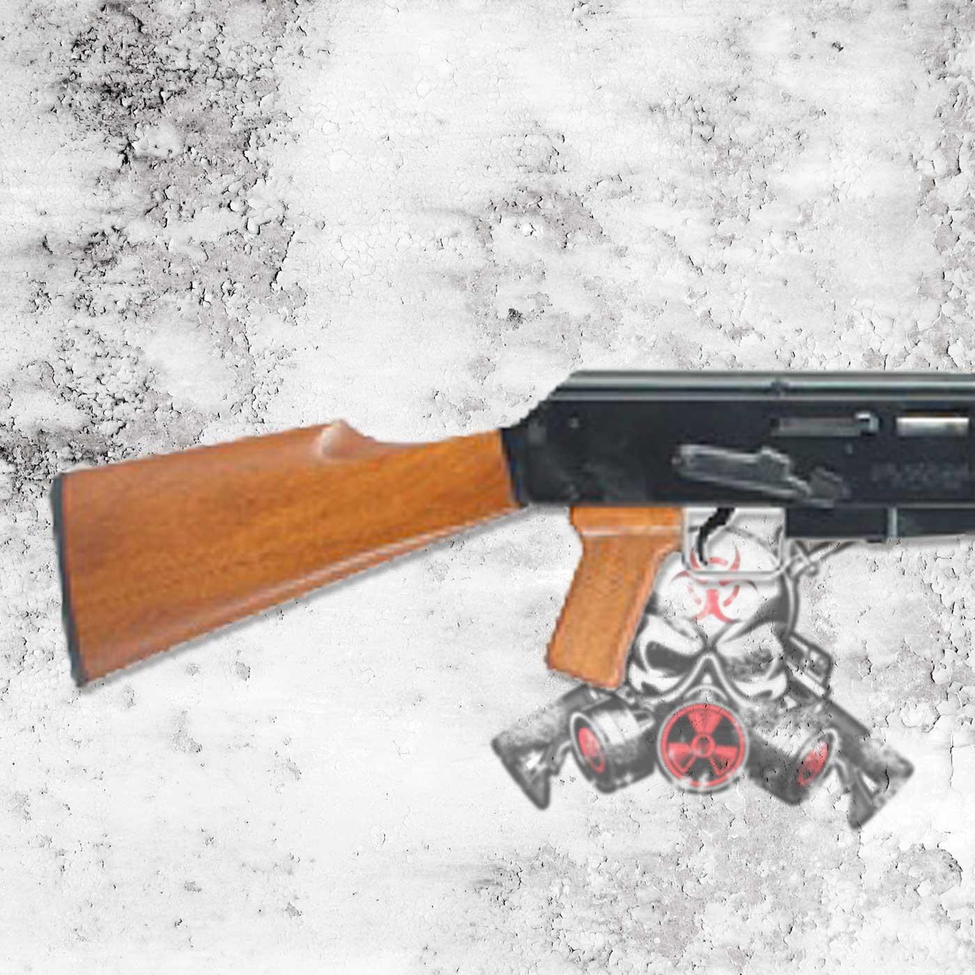 Armscor Ak22 22lr 10rd Bl Wd Stock